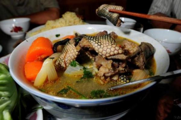 Makanan Ekstrim Pulau Sulawesi