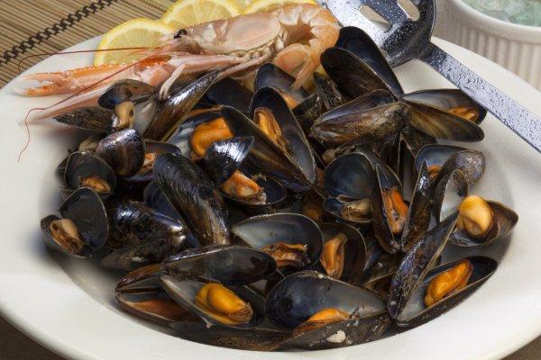 Olahan Seafood Paling Enak